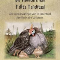 De Novo Boeke Talita cover